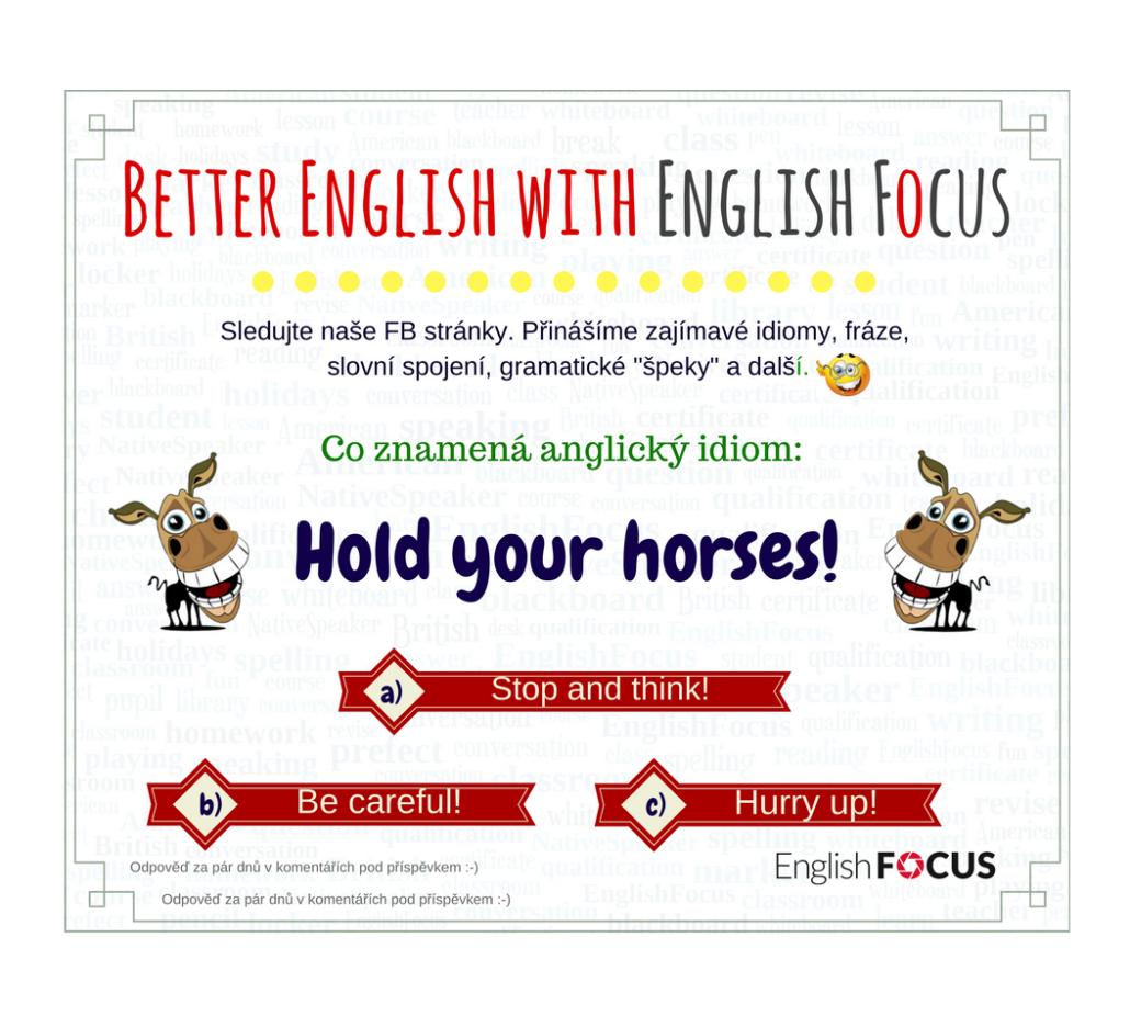 Každý týden zveřejňujeme na našich Facebookových stránkách úkol překlad tip  na zlepšení Vaší angličtiny. Tentokrát se ptáme na jeden běžný anglický  idiom. 14d656622a